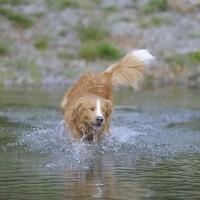 Wasserspaß